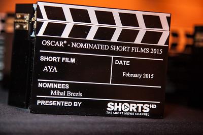 2015 Shorts Awards-4