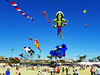 Kite Festival 6