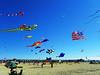 Kite Festival 17