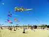 Kite Festival 3