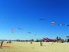 Kite Festival 8