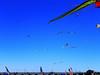 Kite Festival 18