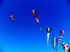 Kite Festival 9