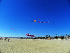 Kite Festival 10