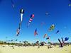 Kite Festival 7