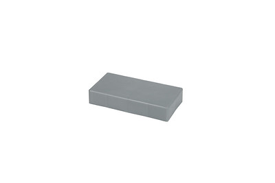 QuarterCap-Silver