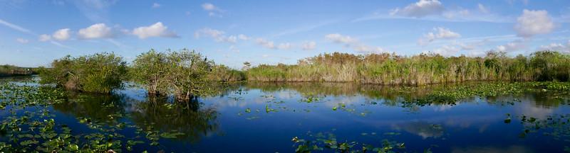 Royal Palm Visitor Center, Anhinga Trail, Everglades NP, FL