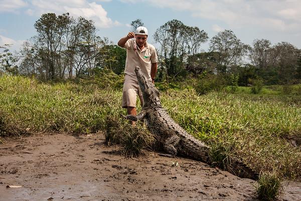 2010, Costa Rica, Rio Tarcoles