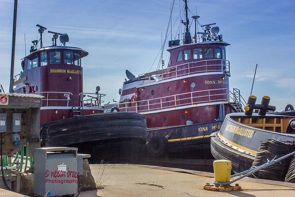 Tugs 'Iona McAlister' and 'Shannon McAllister'