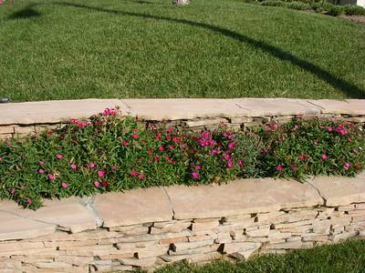 Additions to Tassie's Garden