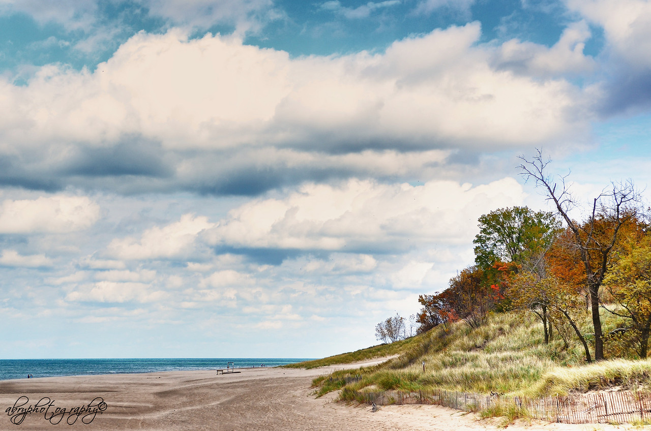 Indiana Dunes-3
