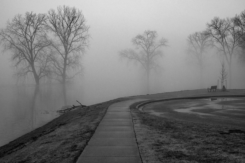 Mississippi River Rising On A Foggy Day
