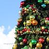 Christmas in Seal Beach