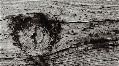 knotted woodgrain