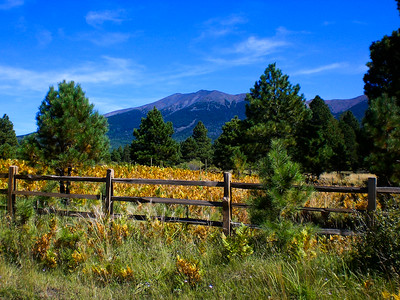 San Francisco Peaks, Arizona
