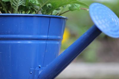 Gardener's friend  copyrt 2014 m burgess