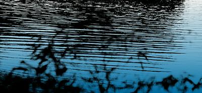 Water's edge copyrt 2013 m burgess