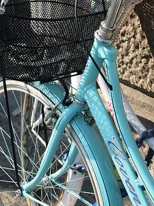 """""""Bicycle at Padua"""" copyrt 2007 m burgess"""