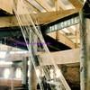 tag chute cobweb