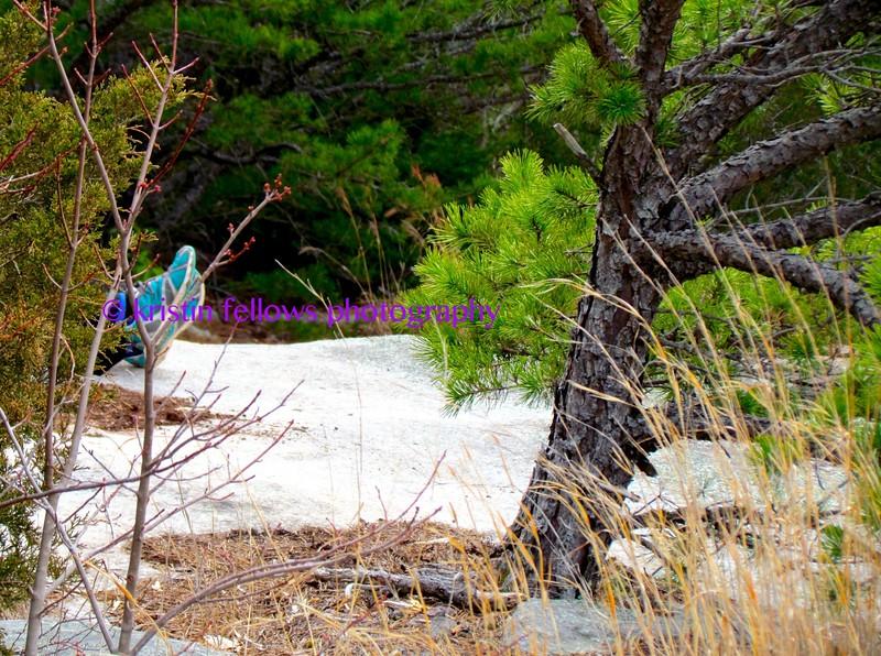 hikers in their habitats