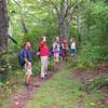 farlow gap trail, pilot mtn, pisgah national forest