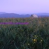 sunrise on max patch