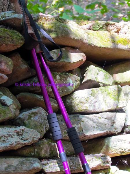 purple poles
