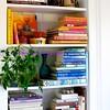 """bookshelves in """"the traveler's room"""""""