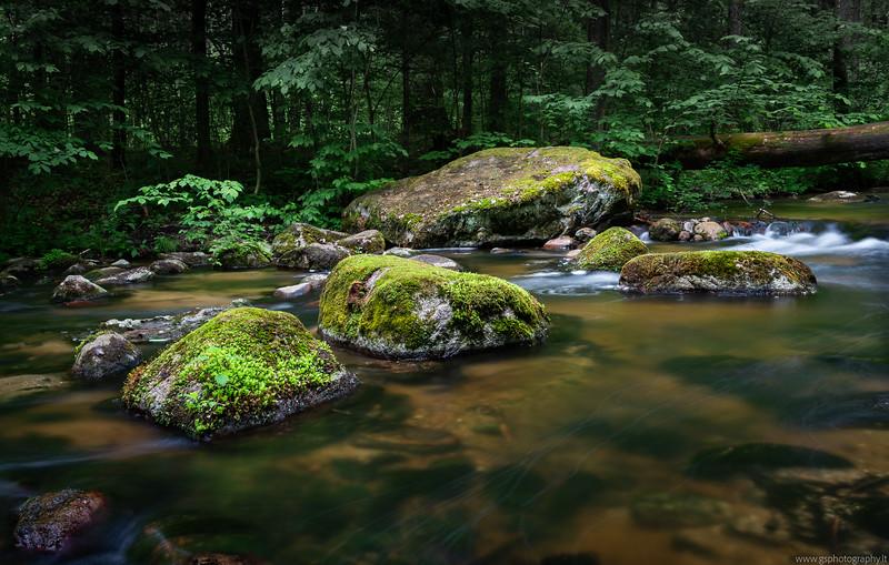 River Saide II