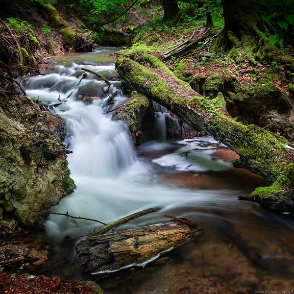 River Vilsa