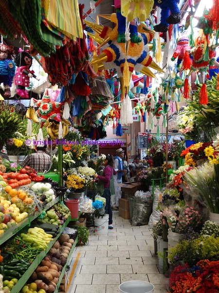 inside the market in san miguel
