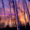 Appalachian Icicles