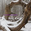 winter sculpture