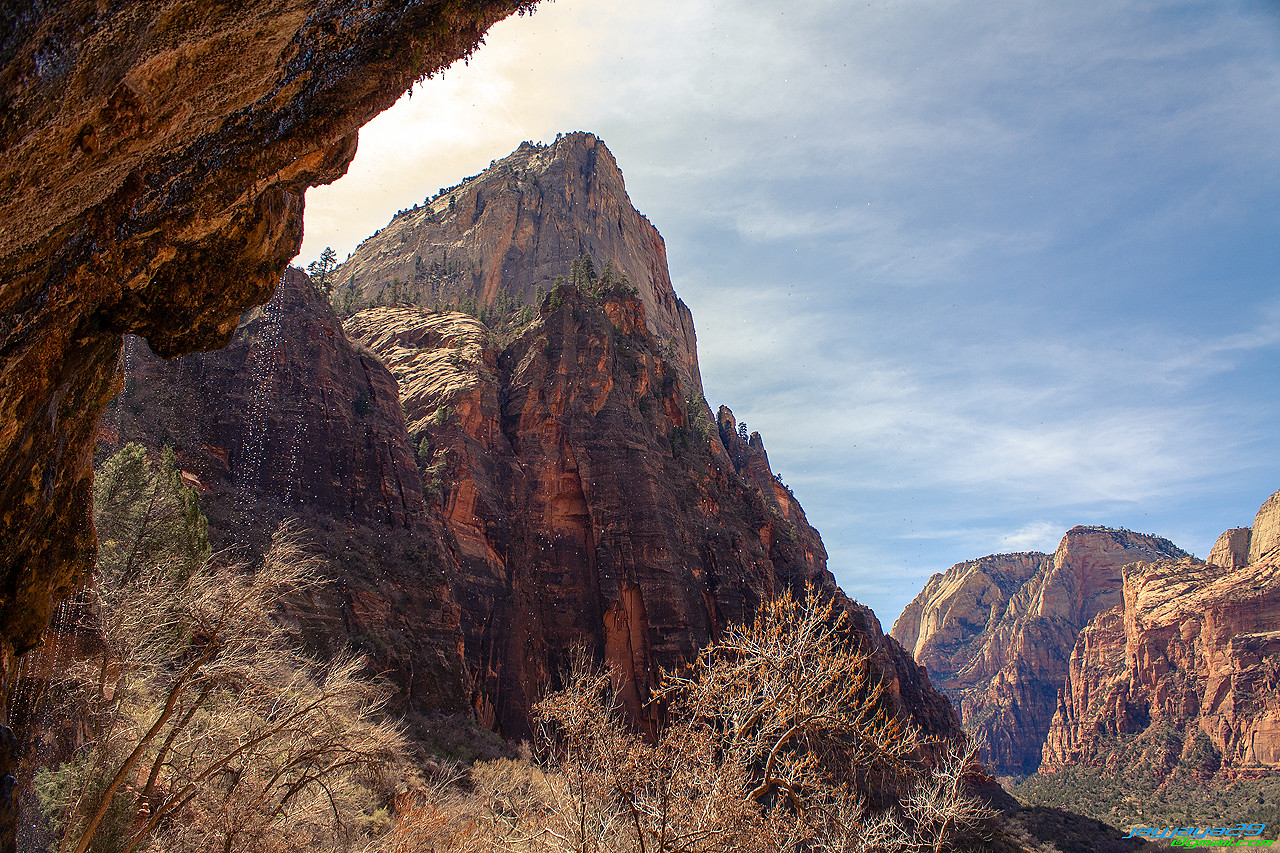 Weeping Wall, Zion National Park