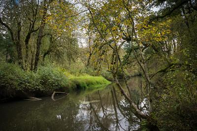 Lacamas Creek