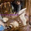 dragons & trolls