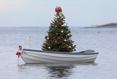 Oceanside Christmas Tree