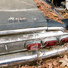Junk Yard Dawgs_0726