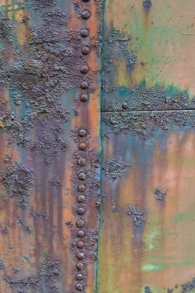 Junk Yard Dawgs_0741