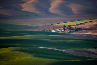 Light bounces off the rolling hills of Palouse, Washington