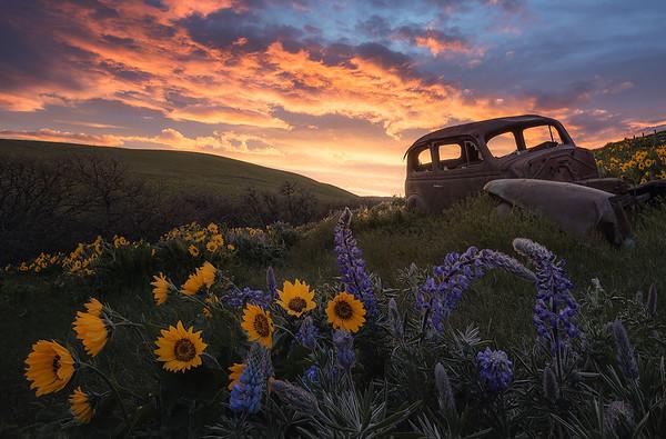 A burning sunset in Dalles Mountain Ranch, Washington