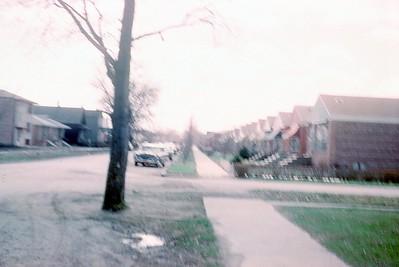 1962 Shameless
