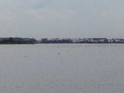 2014 07 19 - Summer Boating (8)
