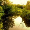 The Royal River