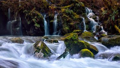 Sweet Creek