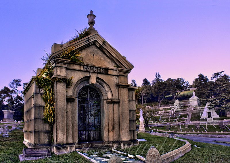 Parker tomb in Mountain View Cemetery, Oakland, CA.  Sorry I don't know what the Parker story is.  I just like the ferns growing out of the side of this mausoleum.