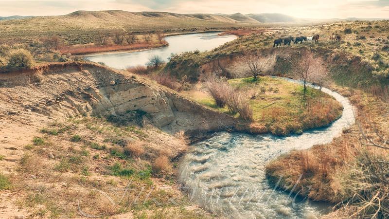 Across the Creek