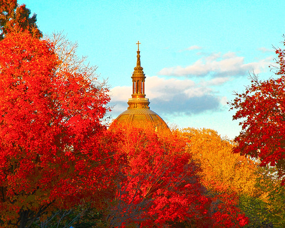 The Cathedral of Saint Paul has a golden glow from  the sunset on this autumn evening on Summit Avenue