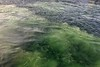 Swirling water as a ferry docks by Galata Bridge