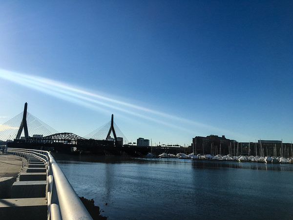 Zakim Bridge in Spring
